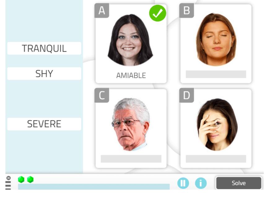 Word-Emotion Association, Social Cognition Activity